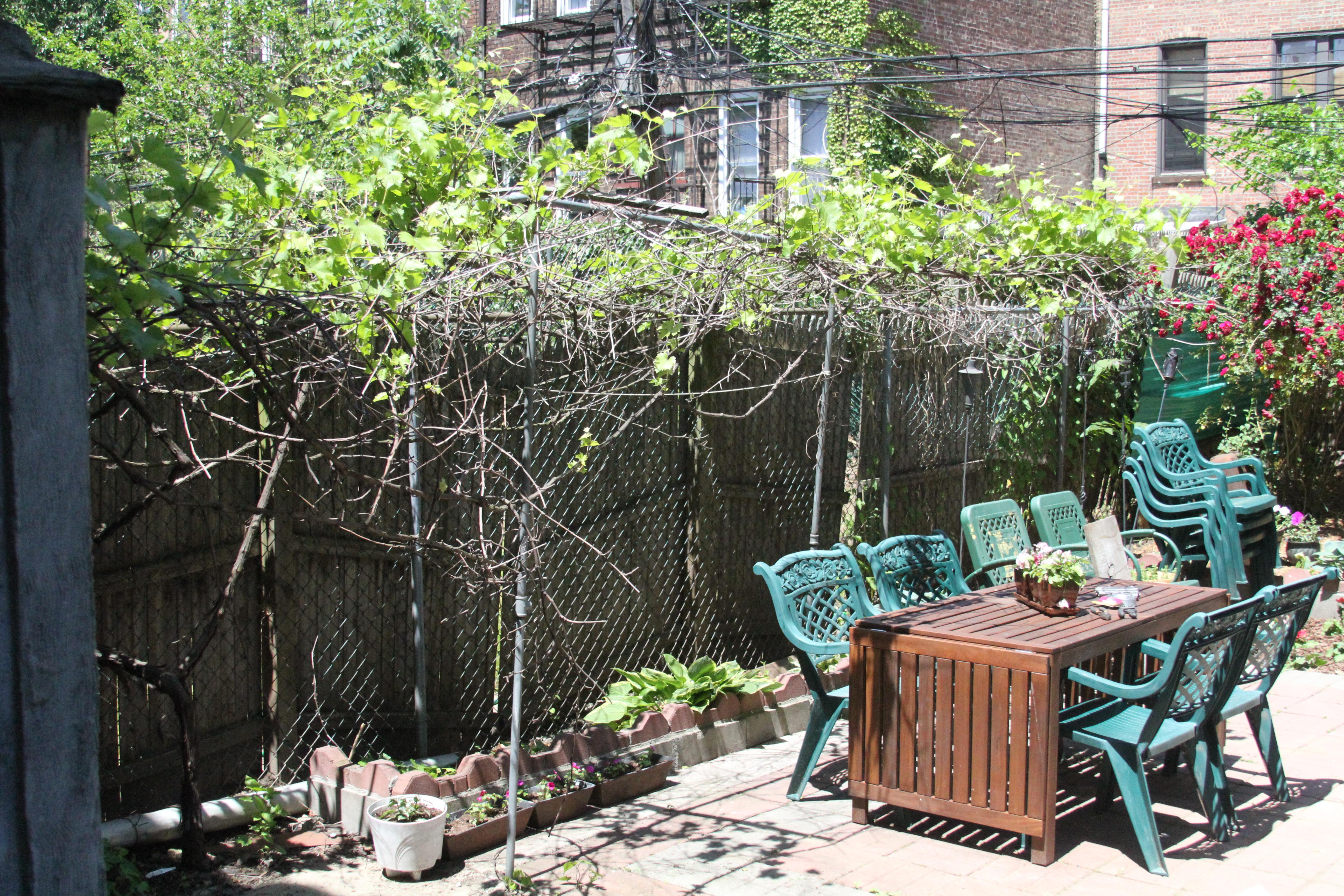backyard a pink brownstone in brooklyn page 2