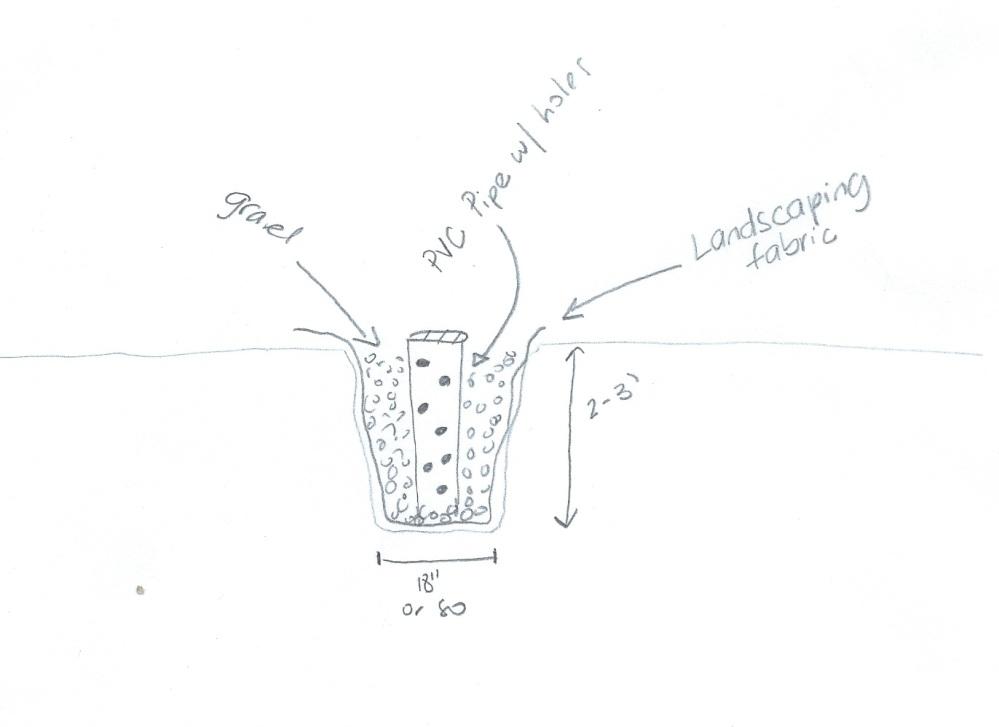 Drain schematic 1